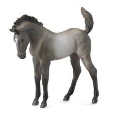 Mustang Veulen Grullo