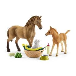 Horse Club Sarahs Zorgt Voor PaardenHorse Club Sarahs Zorgt Voor Paarden